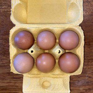 Riverlodge Free Range Eggs